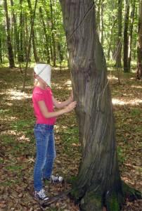Wie fühlt sich ein Baum an, wenn man ihn nicht sehen kann? Das Ertasten eines Baumes war eine neue Erfahrung für die Kinder.